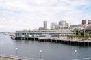 Seattle_2011 (46)